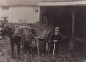 Clearing Manure 1909
