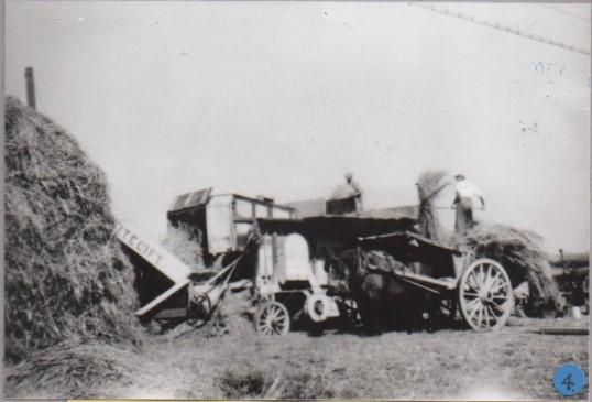 Harvest 1948
