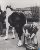 Reg Gibson, the last village blacksmith