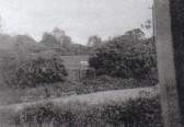 Waterloo Farm 1953