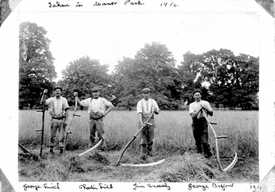 George Smith ; Charles Smith ; Jim Sneesby & George Bedford in Manor Park, Chatteris. with scythes