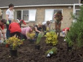 Planting shrubs in courtyard Glebelands School,Farriers Gate, New Road, Chatteris. Parents and pupils were involved.