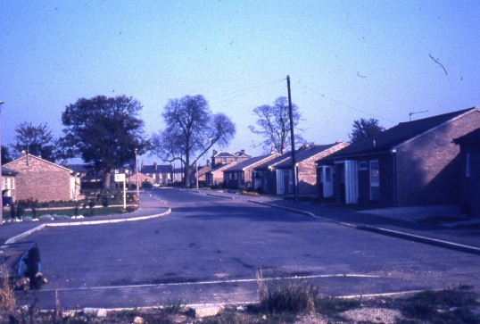 Ash Grove, Chatteris.See