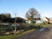 Allotment at the back of Saint Peters Drive, Chatteris