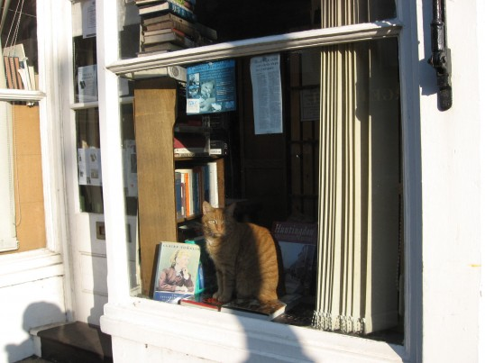 This is a good spot to do some reading  'Joan Stevens Books'   shop in Market Hill, Chatteris