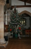 Christmas Tree on display at Saint Peter & Saint Pauls Church Chatteris,. December 2008.