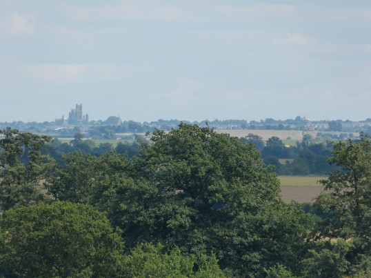 View of Ely Cathedral from Chatteris