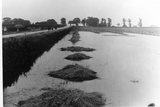 New Road, Chatteris. during 1912 flood.
