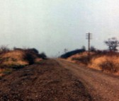 Ferry Hill Railway Cutting  1972