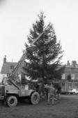 Christmas Tree, Chatteris