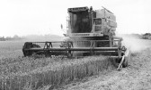 Mechanized Combine Harvester-Stuart Stacey Collection
