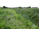Birch Fen Watercourse