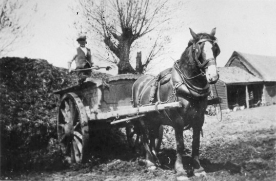 Stuart Stacey Collection; Cart work in farmyard.