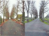 Chatteris Cemetery Autumn and Winter.