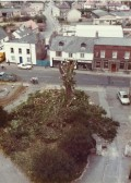 Aerial View of Tree being cut down at St Peter & St Paul's parish church