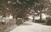 Wood Street, Chatteris.