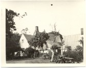 The Red Lion pub garden around 1910. Courtesy of The Cambridgeshire Collection.