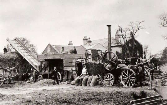Farming in Cherry Hinton (Photo: M Bullivant)