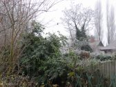 Frosty morning in Camside, Chesterton