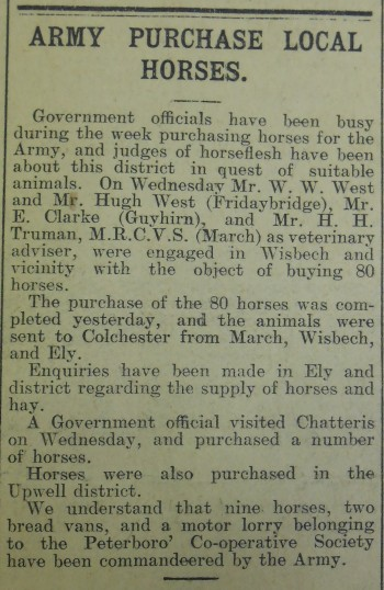 Army-Buying-Local-Horses
