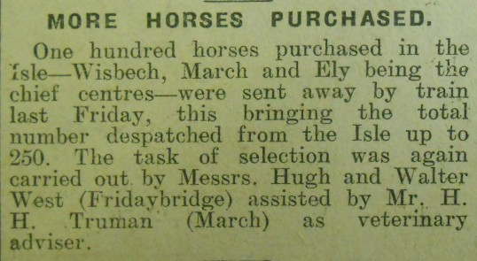 More Horses Purchased