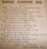 Poetry called Worth Fighting For