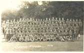 Cambridgeshire Regiment D Company