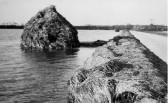Floating hayricks in the 1947 floods