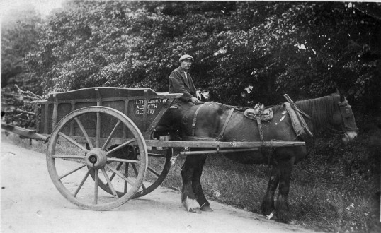 H Thulborn's horse and cart