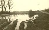 Hillrow Pond