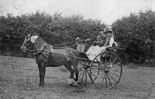 Linton - Mr and Mrs Alfred Forsdike at the 1911 Coronation celebrations in the recreation ground with their decorated pony and trap.