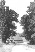 Balsham - looking towards the village from the Linton Road.