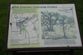 Little Downhm Community Orchard Information Board