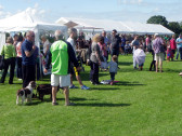 Downham Village Fete 2014