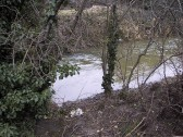 The Lode stream in flood