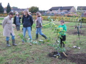 Community Orchard Planting 31 October 2010
