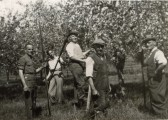 Fruit Workers on Chiswick Farm, Chiswick End, Meldreth