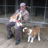 Michael Braysher with two of his St Bernard puppies, Herbie and Archie, named after former residents Herbert Miller and Archie Sutton of Orwell.