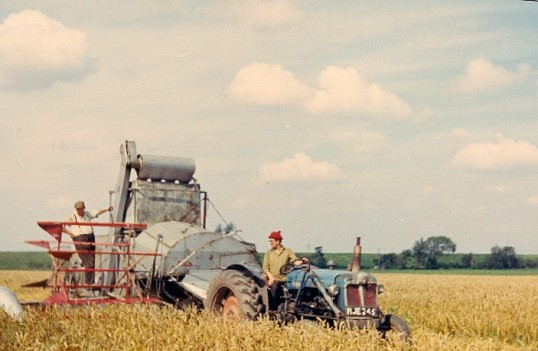 Cyril and Roger Parson harvesting wheat on Oxlode Farm, circa 1964.