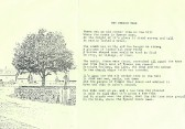 The Conker Tree by Angela Martin (nee Kidd), Pymoor.. The Conker Tree by Angela Martin (nee Kidd)