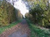 School Lane Path, Pymoor.