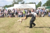 One of the exciting events in the Main Arena at the Pymoor Show 2007.