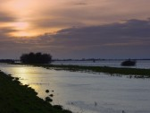 Evening over the Washes looking westwards from the top of the 100 Foot Bank, Oxlode, Pymoor.