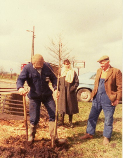 Planting a new tree to replace the old Conker Tree on Pymoor Hill which had died and had been cut down, 1986.