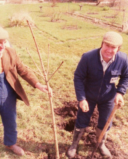 Planting a new tree to replace the old Conker Tree on Pymoor Hill that died and had been cut down.