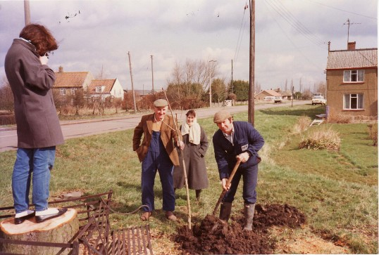 Planting a new tree on Pymoor Hill to replace the old Conker Tree that died and was cut down.. Planting a tree on Pymoor Hill