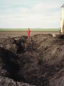 Jon Lark looks down on the 64 foot long Bog Oak found in a field opposite First Drove in Pymoor, 1990.