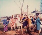 Pymoor WI planting a tree on Pymoor Hill 1970.