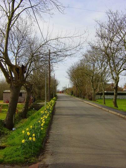 Pymoor Lane, Pymoor, looking west towards the crossroads at Pymoor Hill.