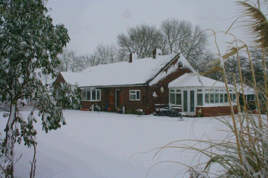 This year was the earliest Easter since 1913. The result was a heavy fall of snow in Pymoor. Here is Chidro, Pymoor Lane 2008.